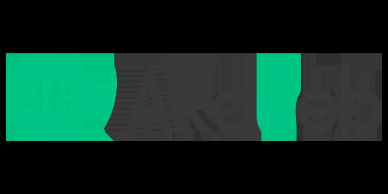 akaueb-agency
